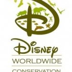 Disney Gives $100,000 Grant to Environmental Group