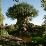 Disney's Animal Kingdom Celebrating Spring with Frogs and Other Amphibians