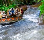 Kali River Rapids at Disney's Animal Kingdom to Close Temporarily