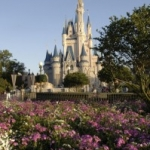 Magic Kingdom's Central Plaza Area to be Expanded