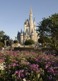 Walt Disney World Resort Providing Free Insect Repellent to Guests