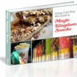 Disney Food Blog Announces Launch of 'The DFB Guide to Magic Kingdom Snacks' e-book
