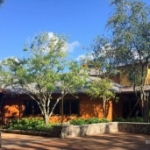 Tiffins and Nomad Lounge Open at Disney's Animal Kingdom