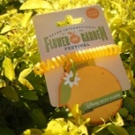 New Orange-Scented Gift Card Debuts at Epcot Flower and Garden Festival