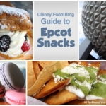 Disney Food Blog Launches 'DFB Guide to Epcot Snacks 2017-18′ E-book