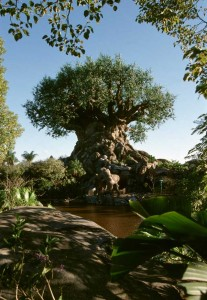 disneysanimalkingdomtreeoflife