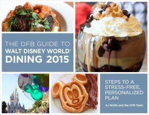 dfb guide cover 2015