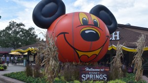 disney springs fall