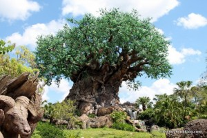 Animal-Kingdom-Tree-of-Life-700x467
