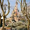 Disneyland Paris Becomes a True Winter Wonderland