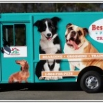 Best Friends Coming to Walt Disney World with Free Treats for Canines