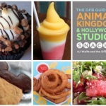 Disney Food Blog Announces Launch of the 'DFB Guide to Animal Kingdom & Hollywood Studios Snacks 2016' Ebook