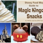The 'DFB Guide to Magic Kingdom Snacks' E-book Now Available